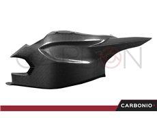 Cover forcellone con paracatena Ducati Multistrada 1200 S PIKES PEAK 2012-13-14