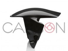 Ducati Panigale V4 Carbon Autoclave racing Front Fender