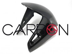Ducati Panigale V4 Carbon Autoclave Front Fender street