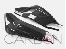 Carbon Swing Cover Autoclave Twill 200 BMW S1000RR 2009-1018 - S1000R Naked 2014-2019