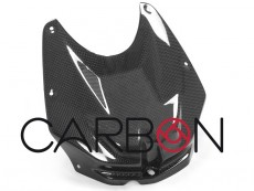 carbon airbox cover BMW S 1000 RR 2010-2014